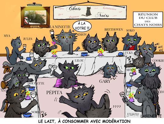 Chat noir 2012