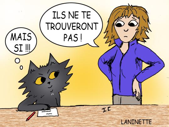 Jeu chat noir
